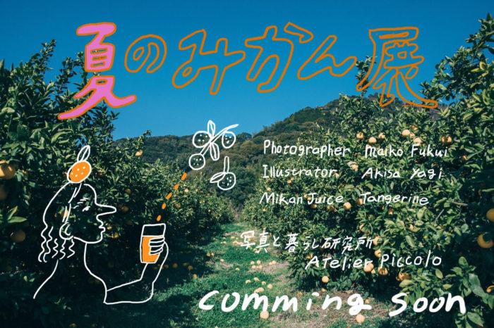 AtelierPiccolo 「夏のみかん展」開催のお知らせ